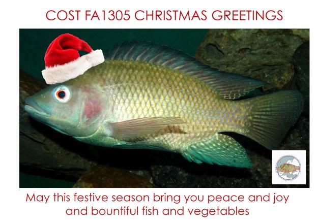 FA1305 CHRISTMAS